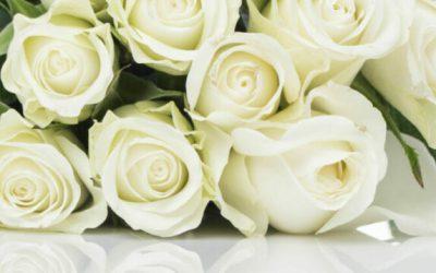 Geuren brengen geborgenheid